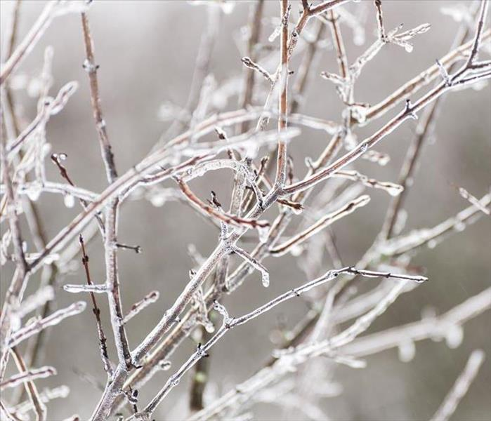 Commercial Tips for Preparing Your Business for Winter Weather